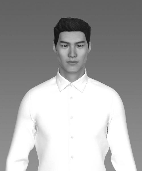 henry-model